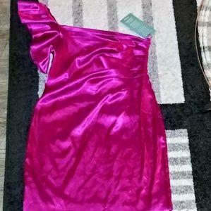 Liliana Fuchsia dress 14